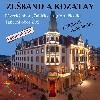 Slavnostní koncert ZUŠ Horní Slavkov/Loket